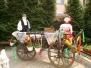 02.05.2011 - Vítame prvý máj v Domove, n.o